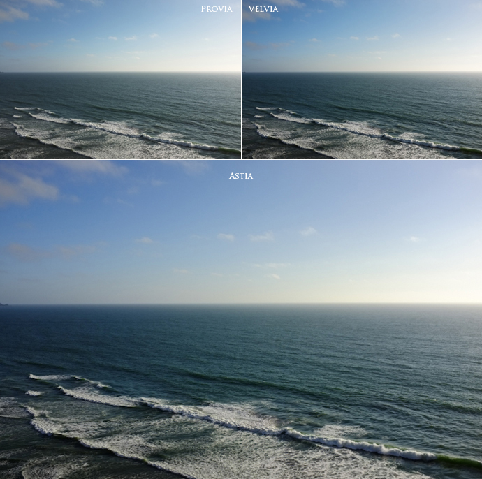 Fuji X100: Film Simulation Modes Compared – Jonathan