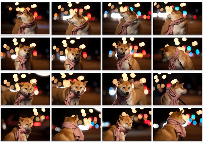 Screen Shot 2013-12-31 at 8.26.25 AM